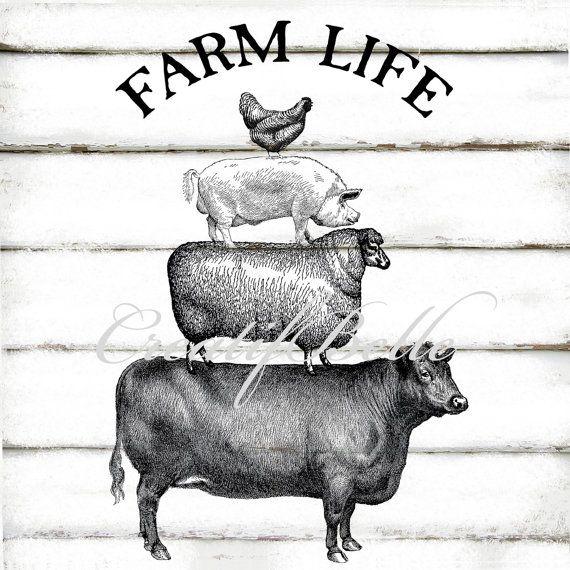 Farm Prints Cow Pictures Vintage Farm