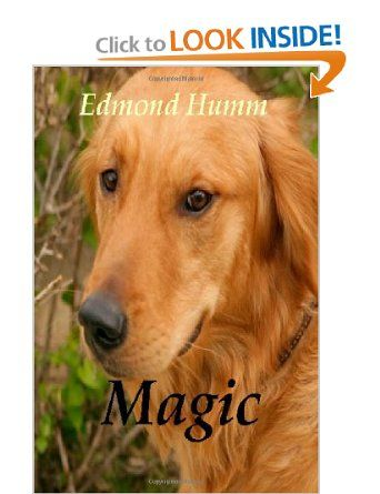 Magic: The story of a lost dog and a wounded Marine. [Paperback]