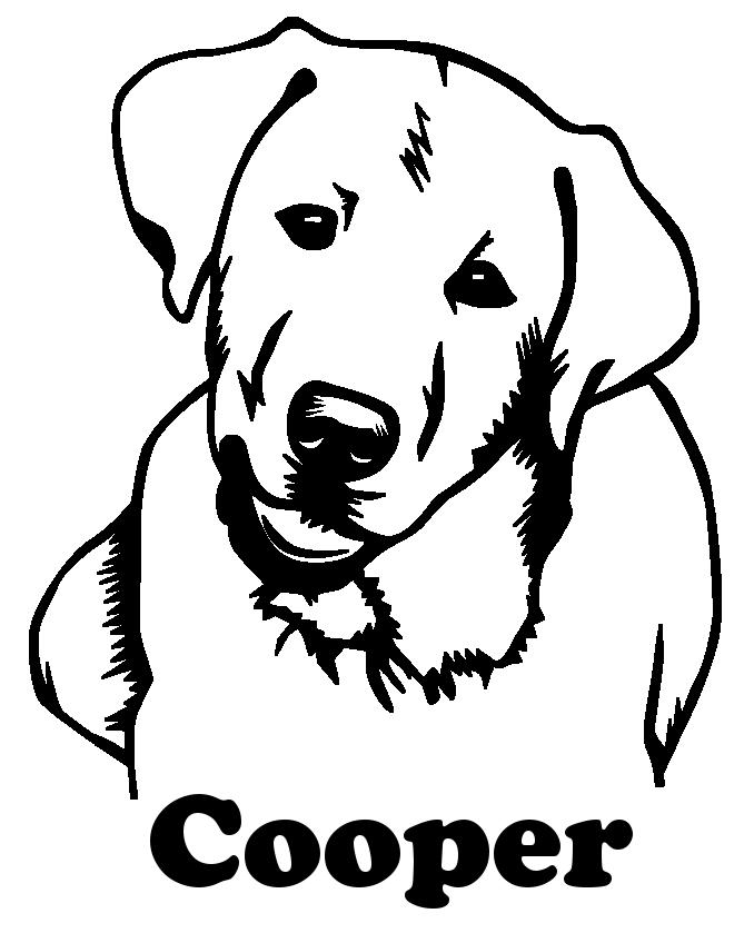 liegender labrador als grafik  hund zeichnungen hund