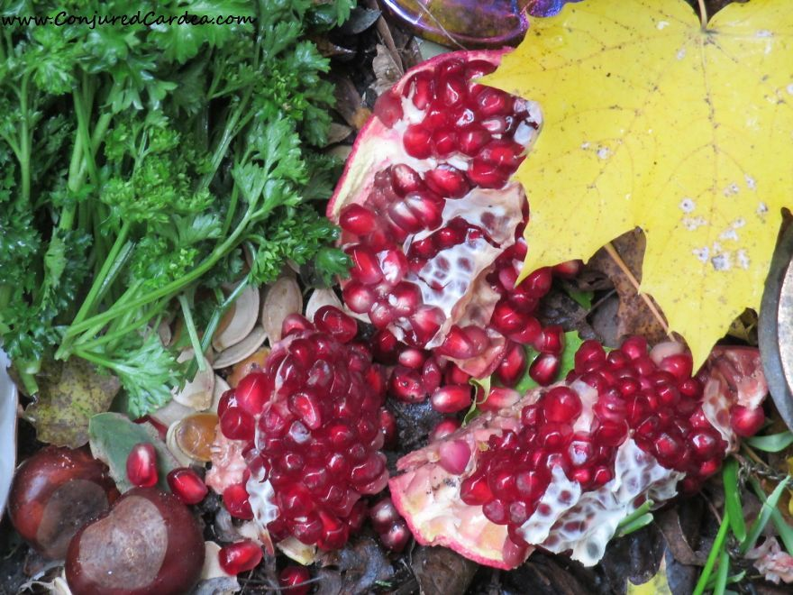 Autumn's Offerings