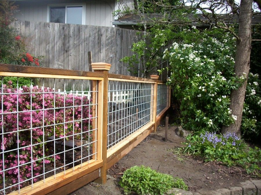 New hog panel garden fence garden pinterest garden for Garden decking fencing