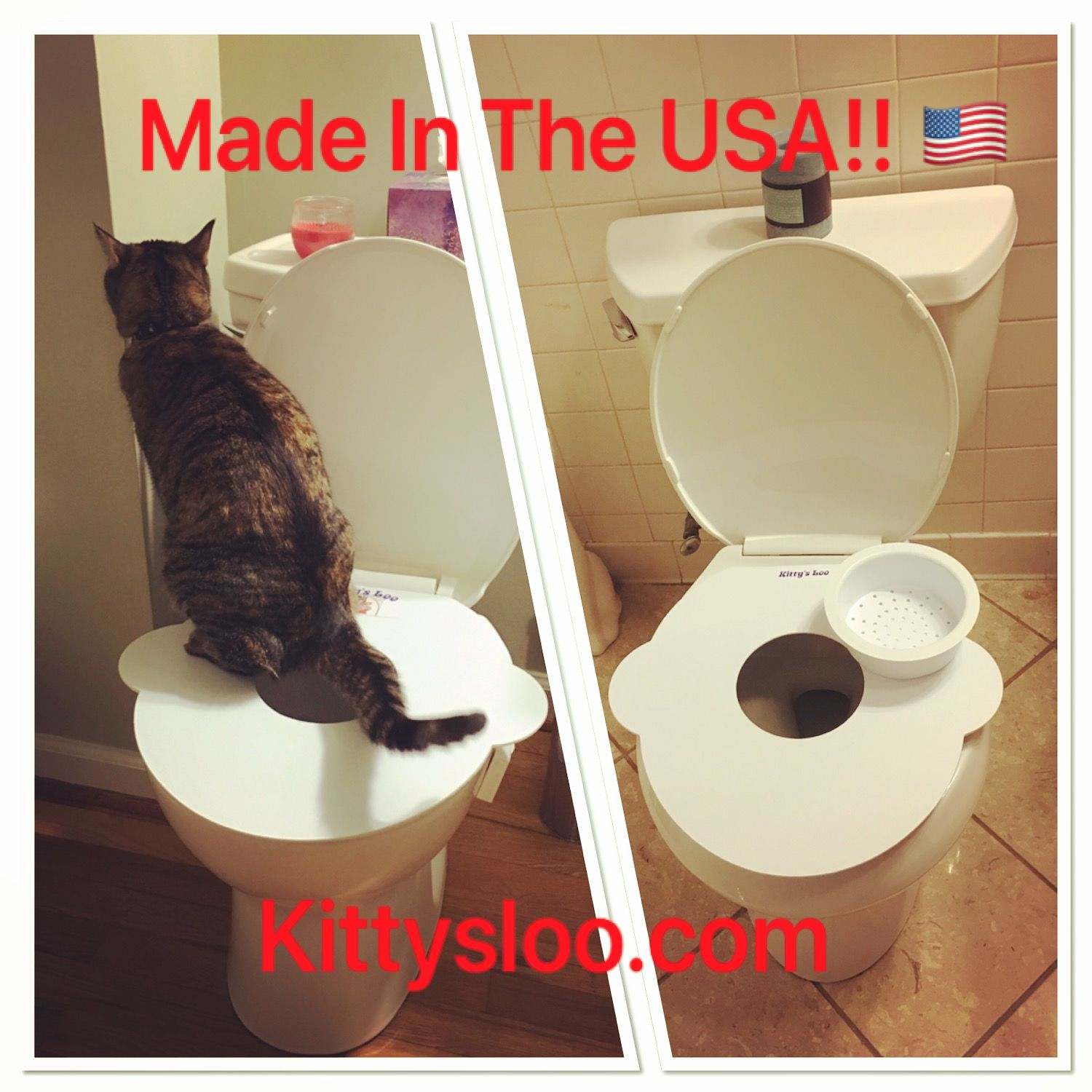 It S Time To Get Rid Of The Litter Box Buy Now And Save Now Cats Bathroomideas Kittens Kittysloo Tinyhouse Catt Cat Toilet Training Purrfect Indoor Cat