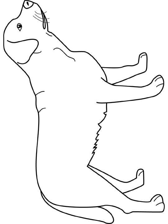Kleurplaten Honden Labrador.Kleurplaat Honden Kleurplaat