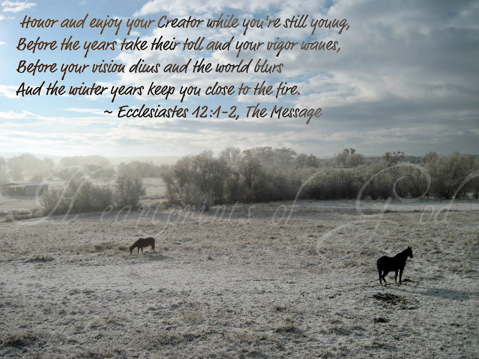 The Winter Years~ Ecclesiastes 12:1-2~<3 | Walk by Faith