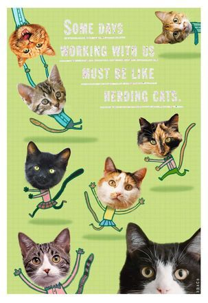 Herding Cats Administrative Professionals Day Card Herding Cats