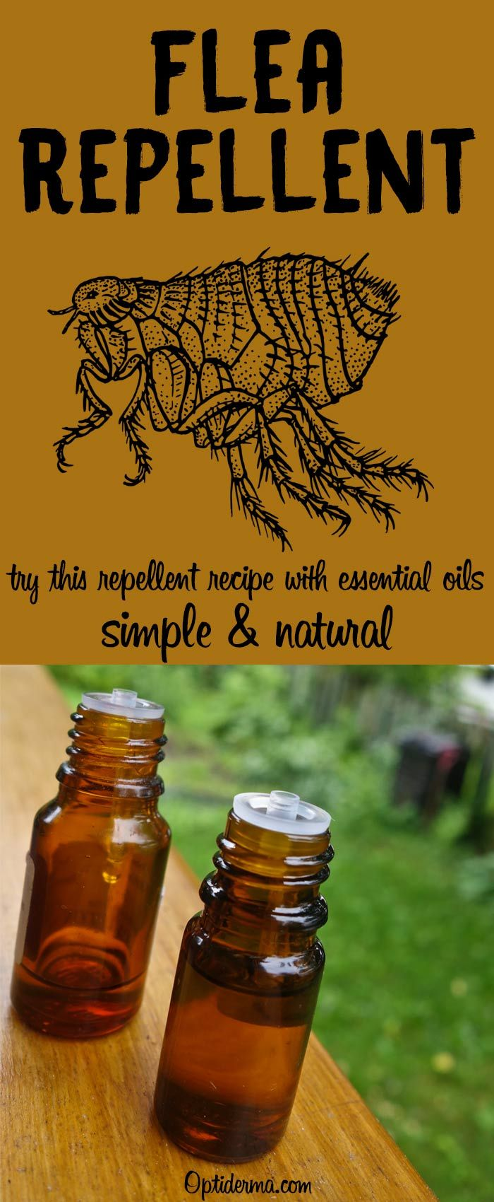 Pin By Karla Veatch On Get Rid Of Bugs Naturally Tea