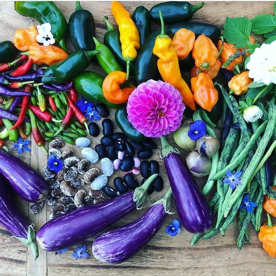 Nutrient dense food for the mind body and soul  What do you grow at home  Pic by thesubpod
