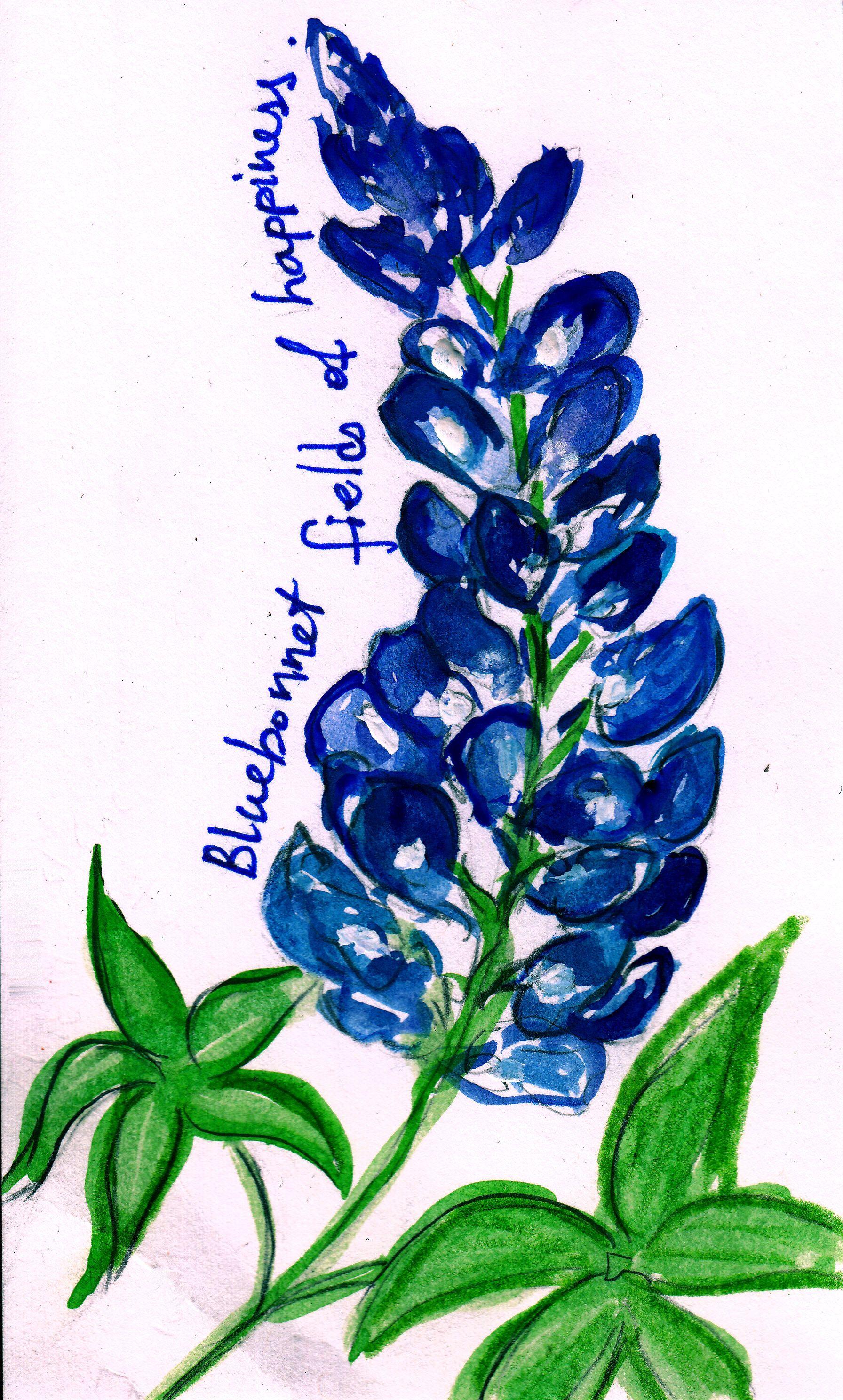 Bluebonnet | BLUE BONNETS | Pinterest | Arte