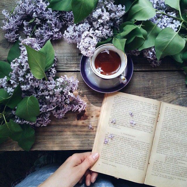 очередей границе фото с книгой и чаем обязательном порядке