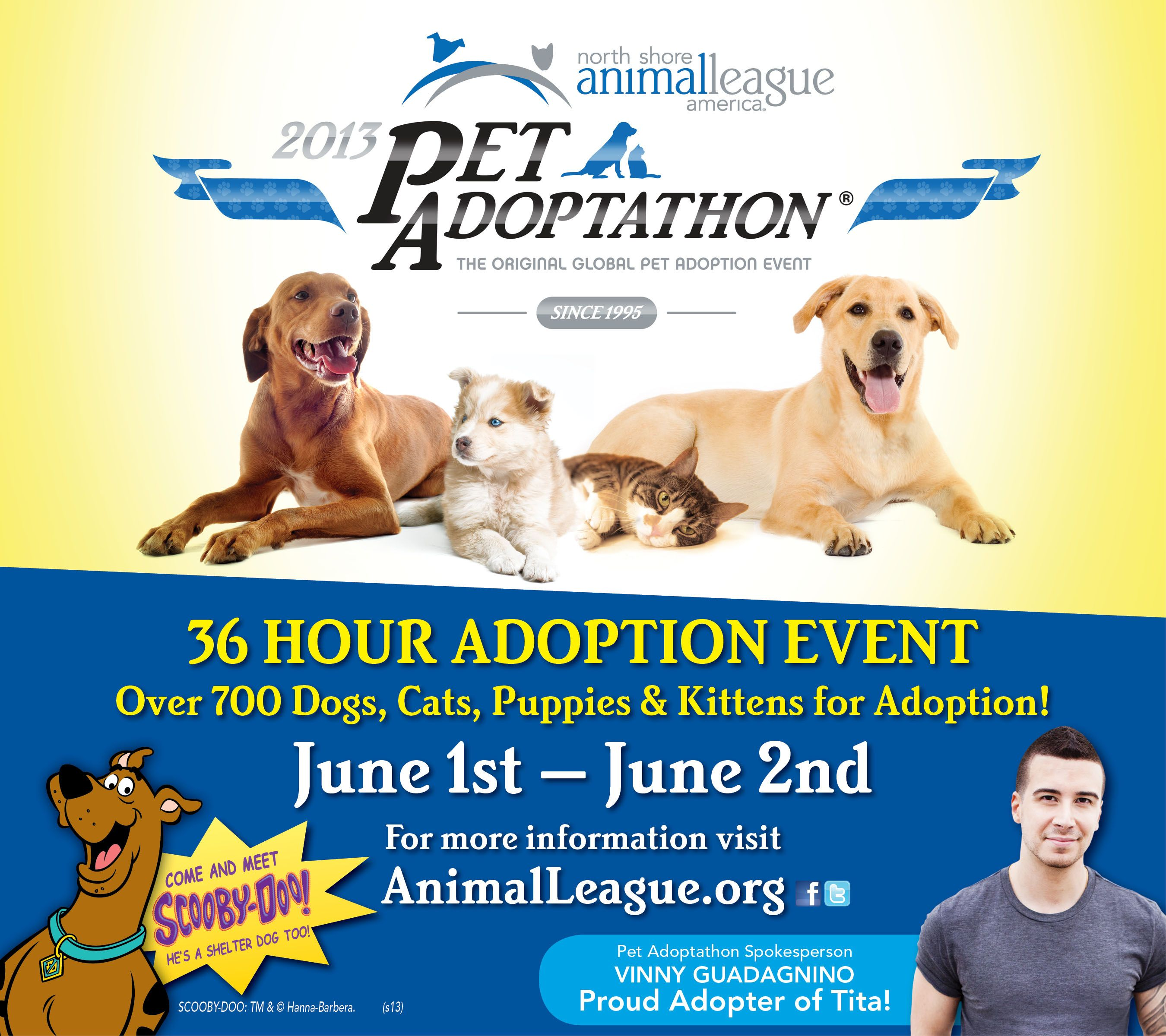 Mtv Star Vinny Guadagnino Spokesperson For Pet Adoptathon Month