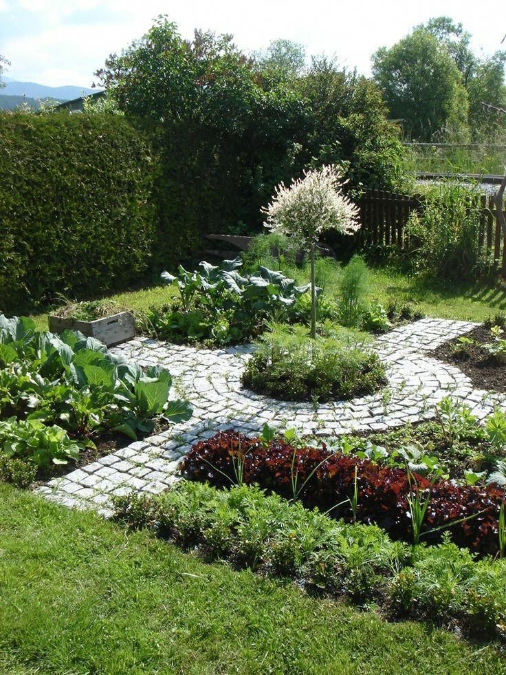 Beautiful Vegetable Garden Design Plants
