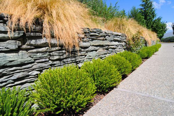 Mbp1 04 Jpg 600 399 Pixels Garden Design Vegetable Garden Design Garden Ideas Cheap