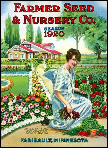 Farmer Seed And Nursery Co 1920