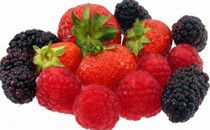 Berries protect brain health and prevent onset of cognitive disorders like dementia and Alzheimer's disease. #examinercom