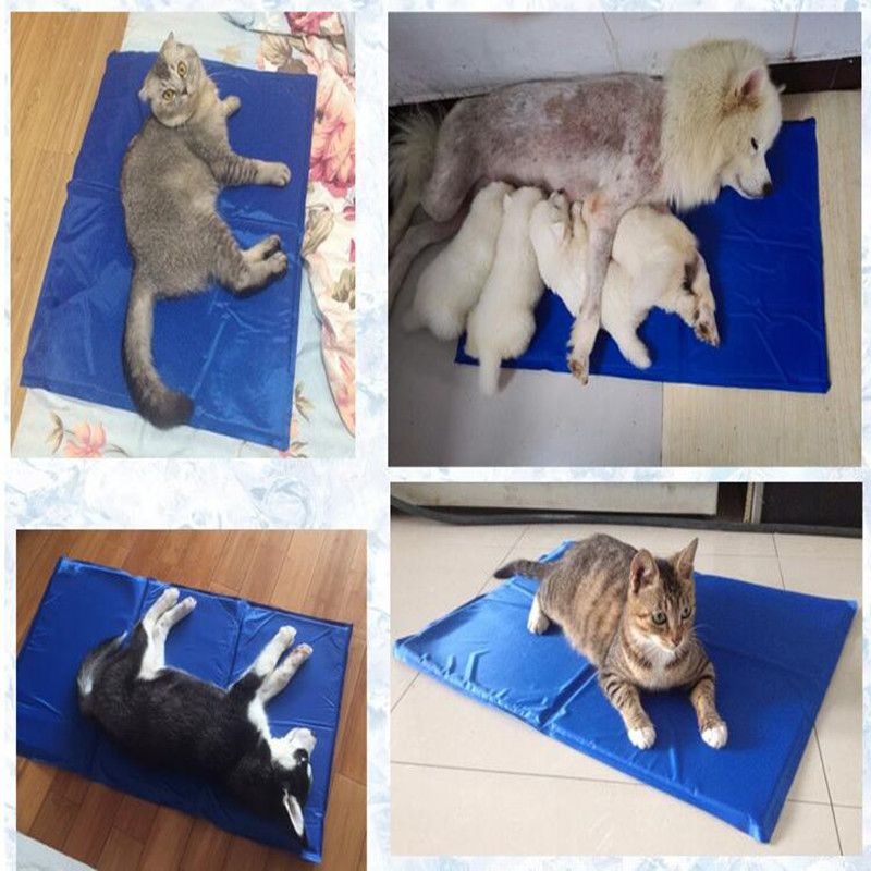 Wholesale Supply Dog Gel Cooling Pad Pet Cool Pad Manufacturer