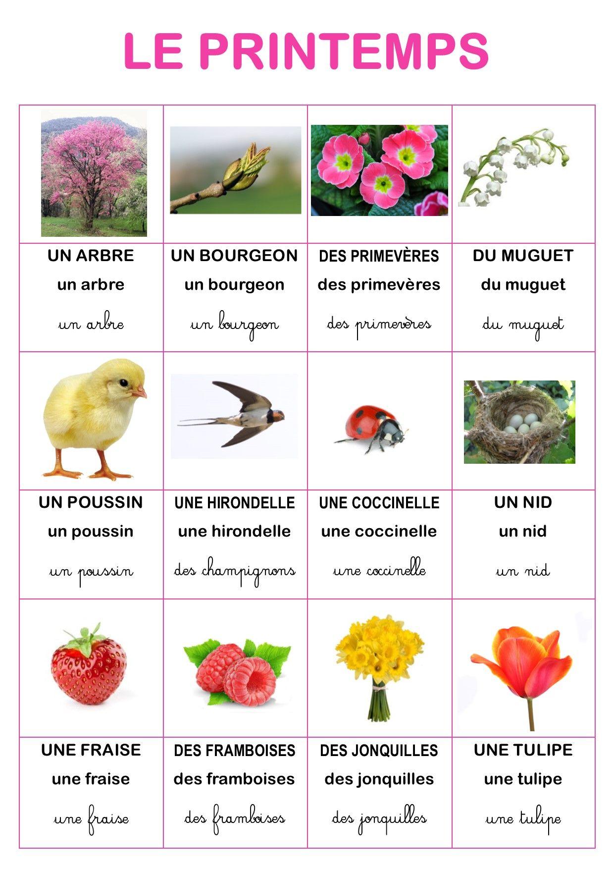 Imagier nature du printemps d 39 elisa swaney vocabulaire for Jardinage le monde