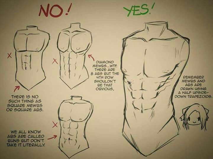 Pin by 石楠花 on How to draw | Pinterest | Drawings, Anatomy and ...