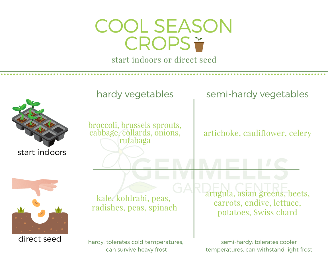 Cool Weather Crops Soil Seeding Gardening Season Ottawa Smiths Falls Barrhaven Victory Garden Tips In 2020 Seasonal Garden Victory Garden Gardening Tips