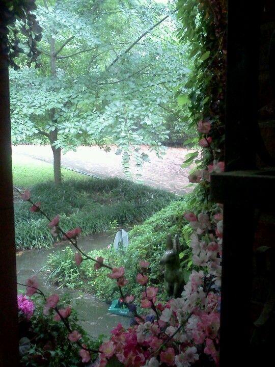 Looking Out My Front Door My Yard Pinterest Front Doors
