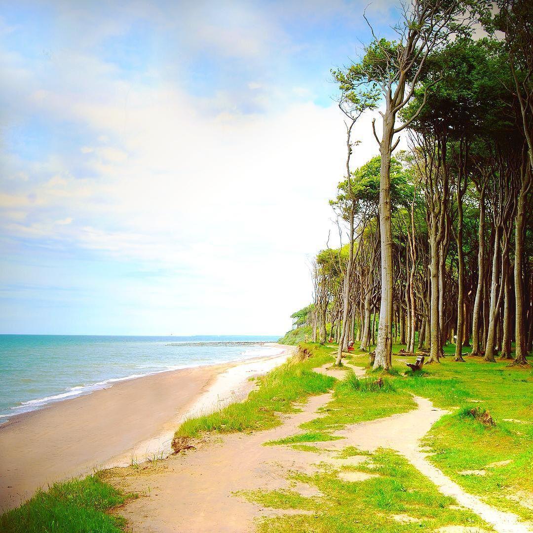 Viele Grusse Aus Dem Gespensterwald In Nienhagen Sendet Fridaslachen Meer Mode Kuste Nordsee Ostsee Ostsee Instagram Mecklenburg Vorpommern