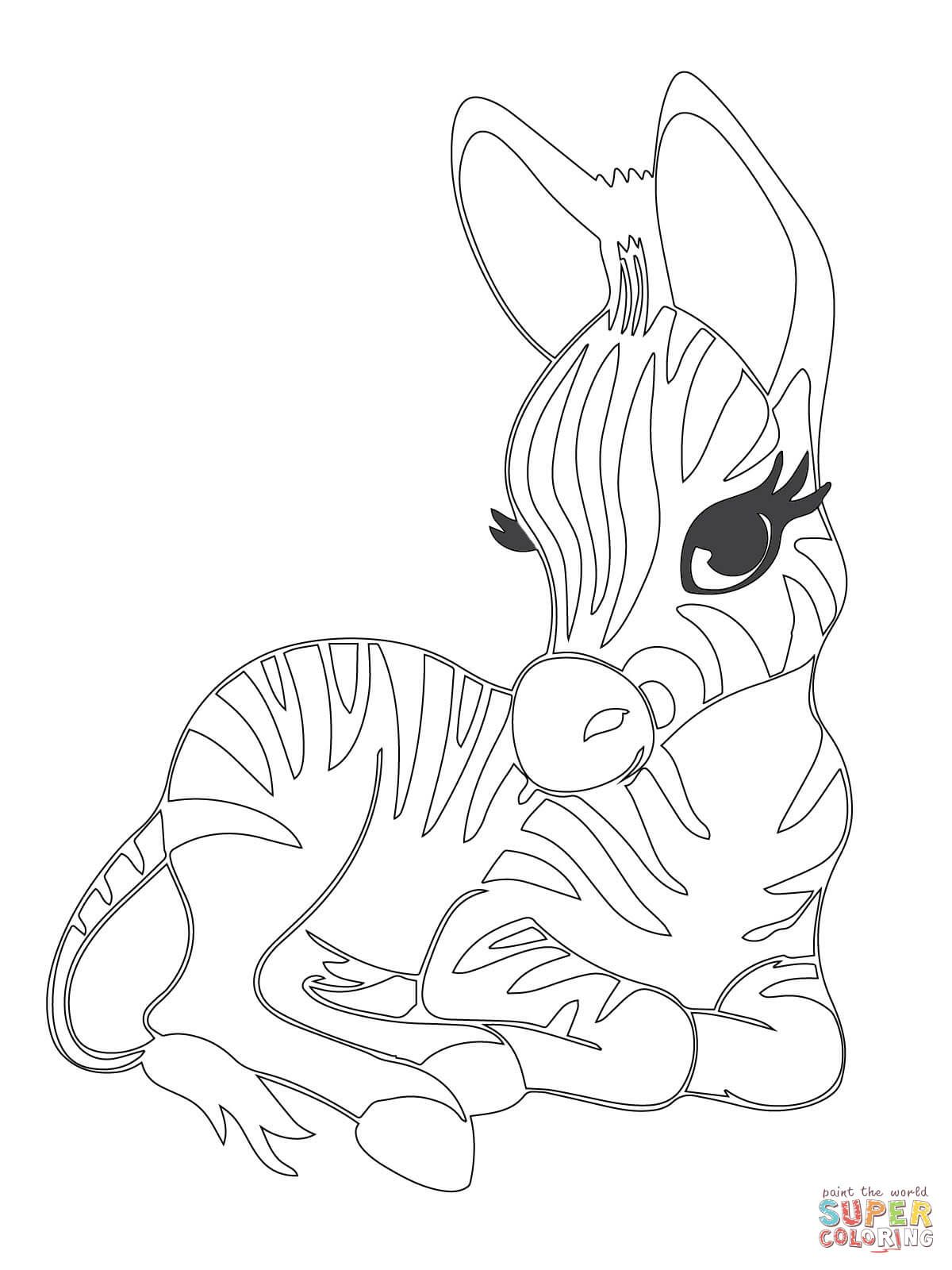 Cute Baby Zebra Coloring Page Free Printable Coloring Pages Zebra Coloring Pages Animal Coloring Books Giraffe Coloring Pages
