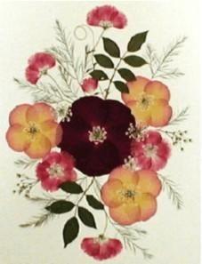 Como Hacer Cuadros Con Flores Secas Prensadas Por Nosotros Pressed