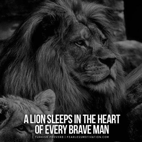Motivational Quotes With Lion Images: Pin By Balvinder Singh Gill On Lions & Angels