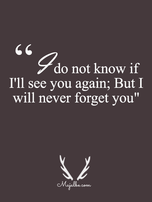 Forget Love Quotes Delectable I'll Never Forget Love Quotes  For Quotes Lover  Pinterest