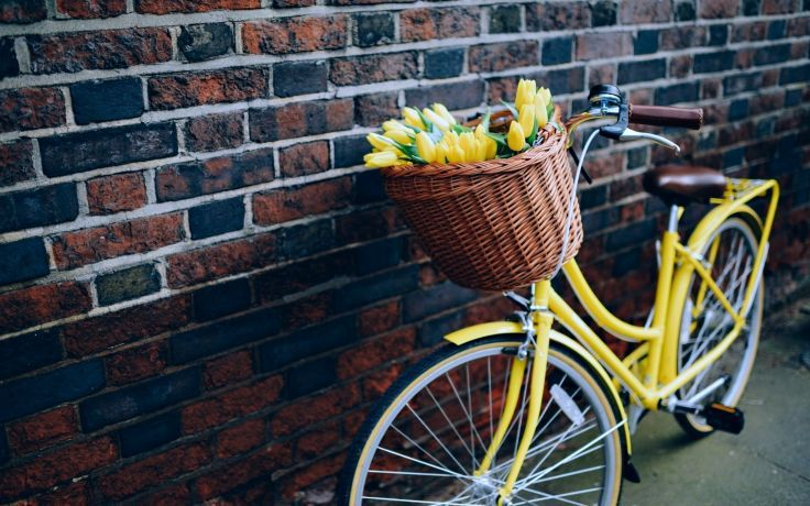 Flowers Bike Yellow Wall Bicycle Life Love Wallpaper Background