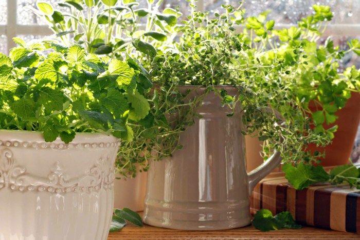 Aromatische Kräuter, DIY-Projekte für praktische Räume. #kleinekräutergärten