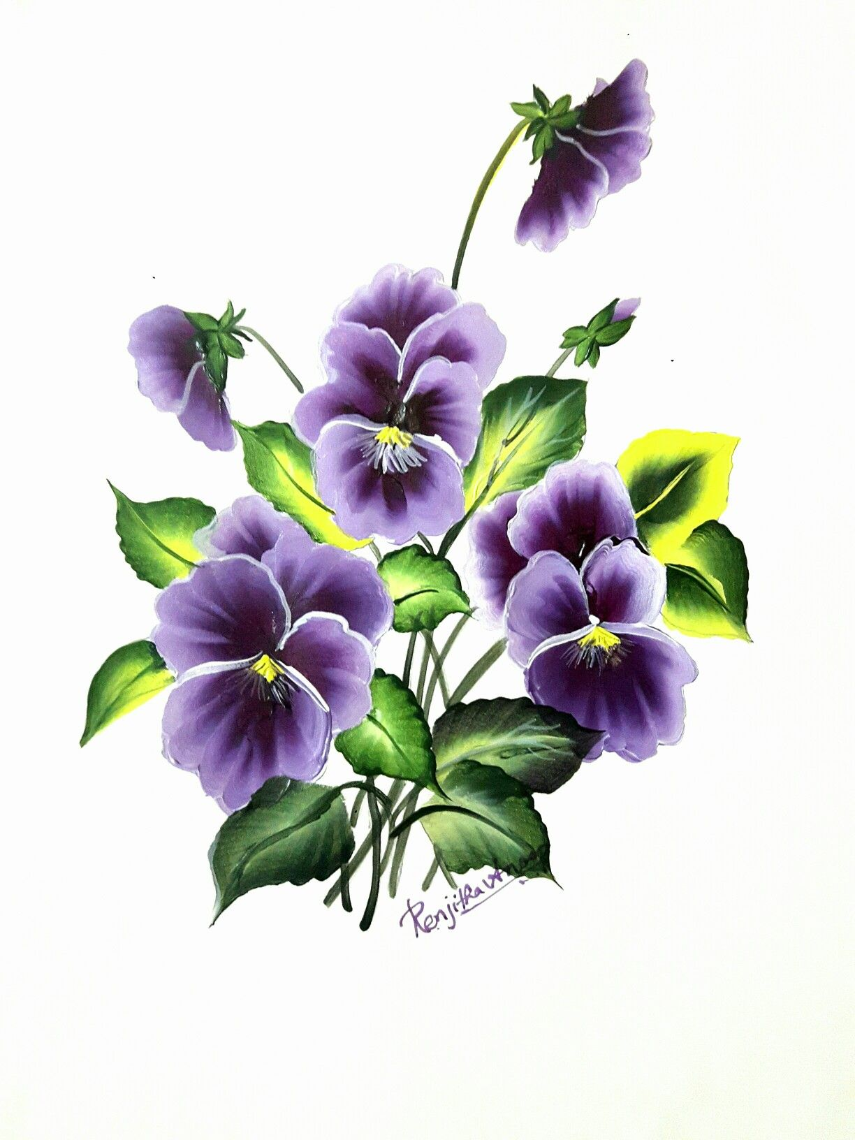 виола цветок рисунок свиной туши