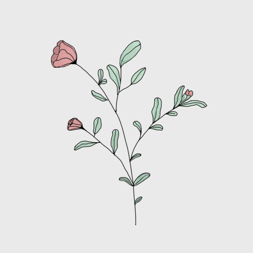 Image Result For Tumblr Doodles Minimalist Flowers Drawings Art