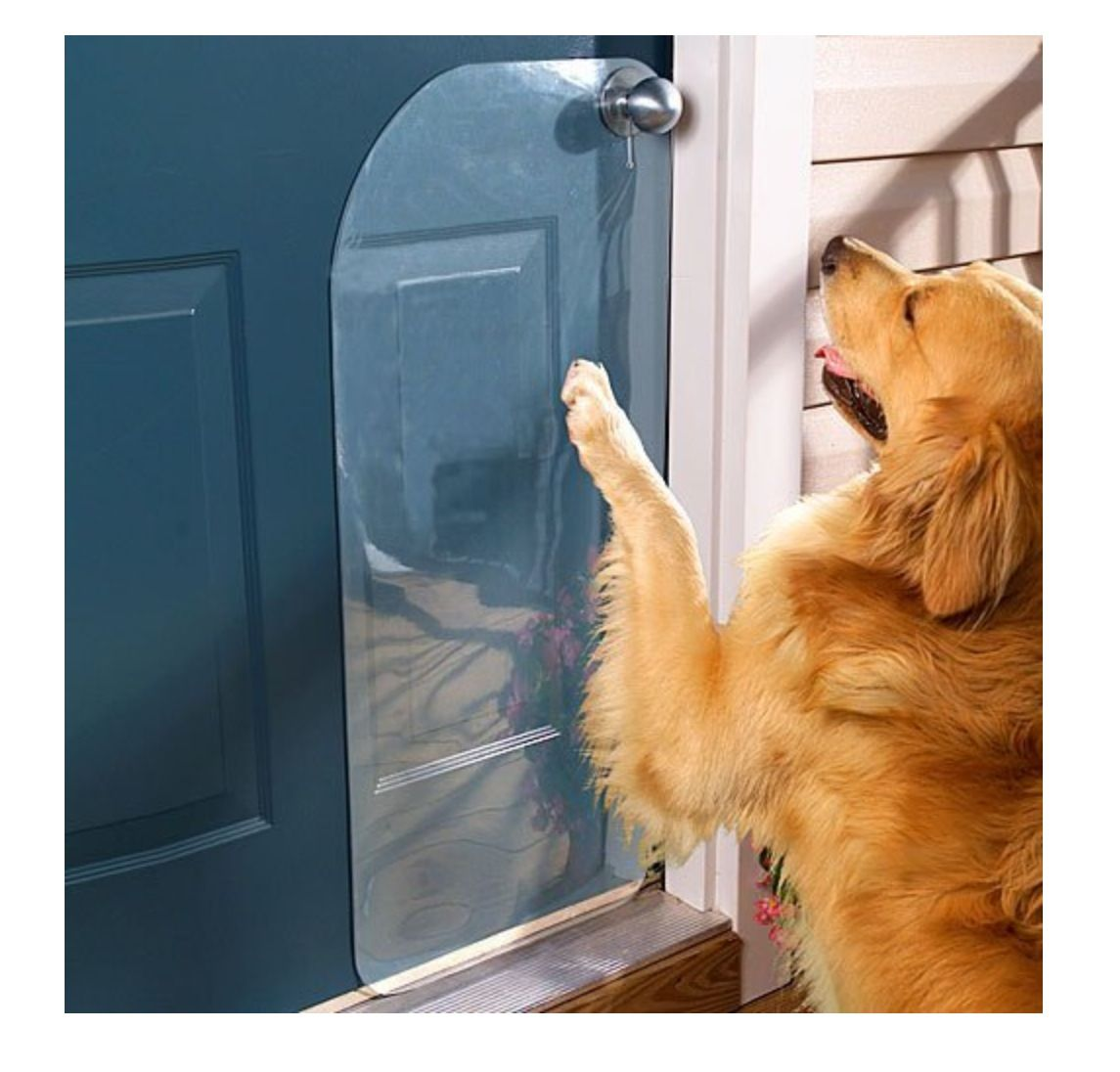 Door Scratch Protector Available At Amazon Decoration