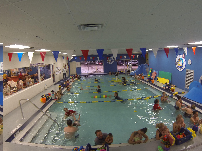 Lessons At Seal Swim School Swimming Time Pinterest Swim School
