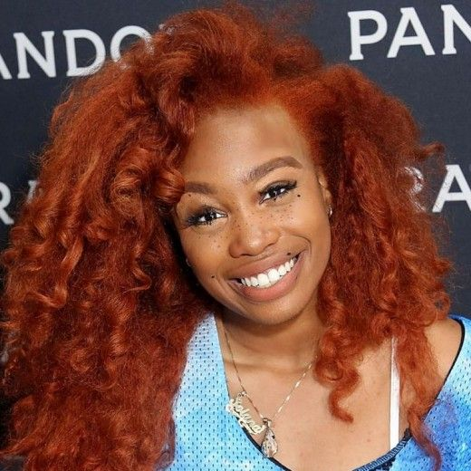 Beauty Now The Evolution Of Sza Natural Hairstyles