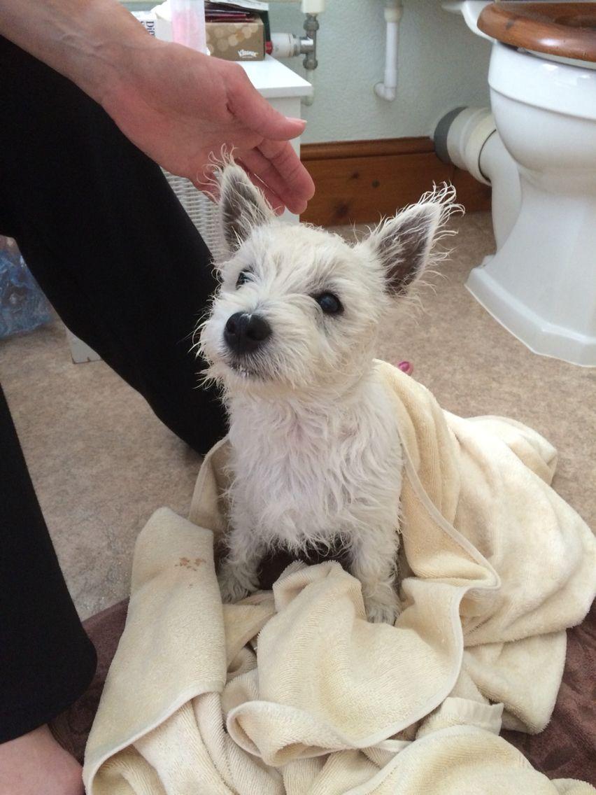 Bath time..