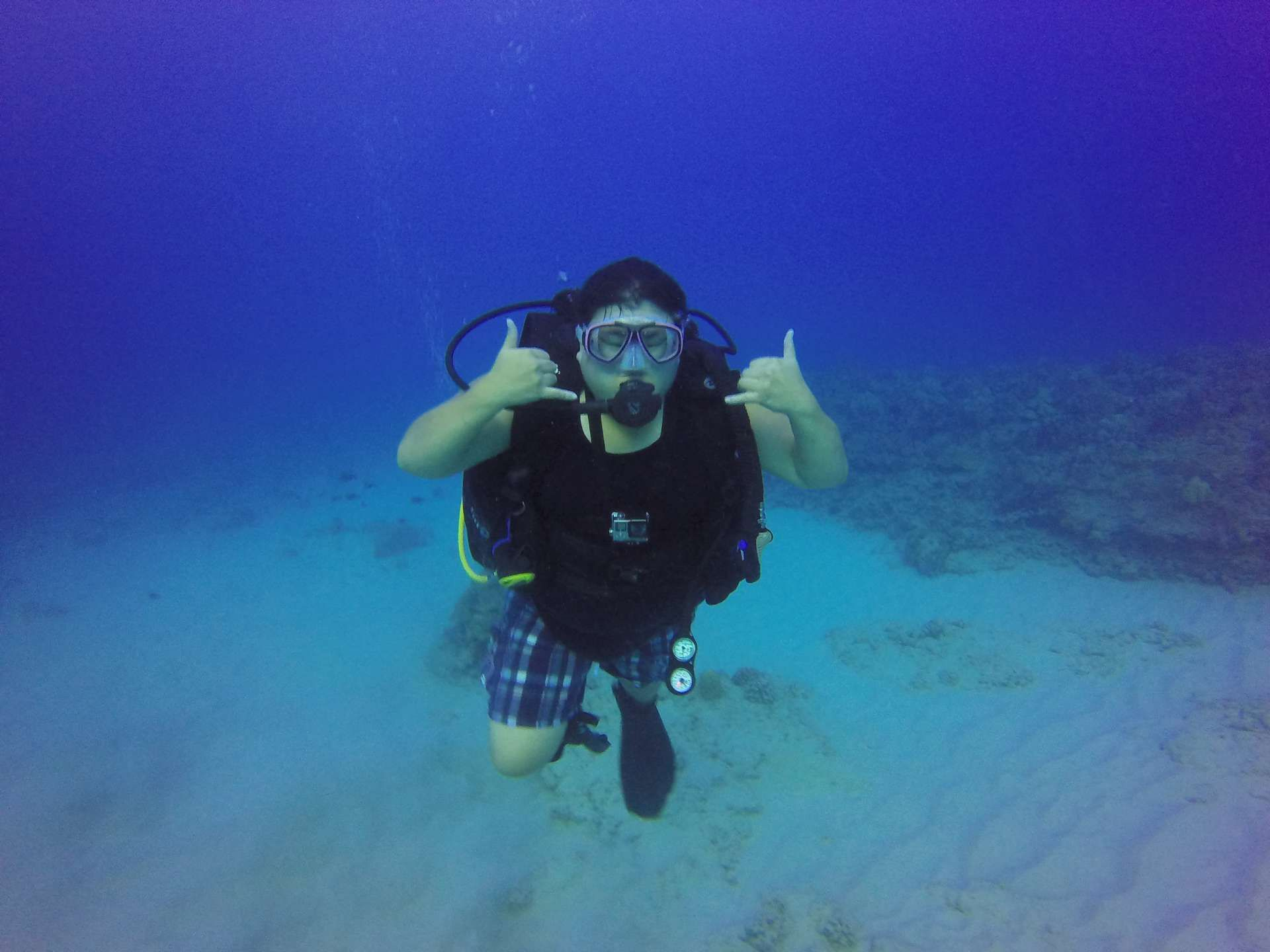 #hawaii #scuba http://rainbowscuba.com/hawaii-scuba-prices.html @rainbowscuba
