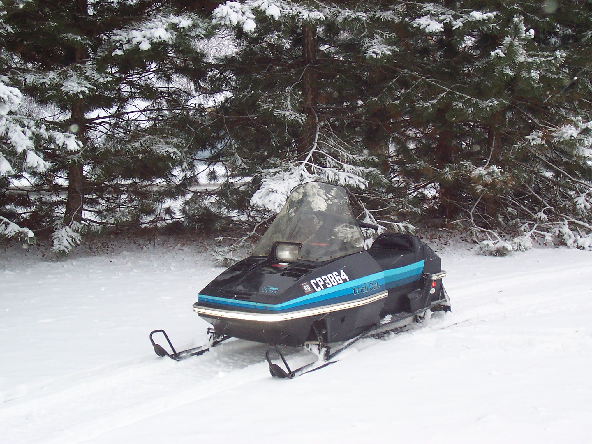 1979 arctic cat trail 4000 Google Search Cats, Arctic