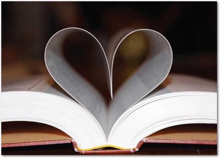 livres sur l'art, la photographie, l'architecture, la mode, les autobiographies...
