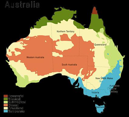 image result for australian rainforest map