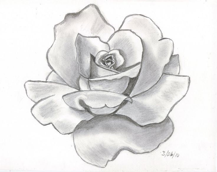 Pencil drawings this is my first attempt at doing a shaded pencil drawing of a