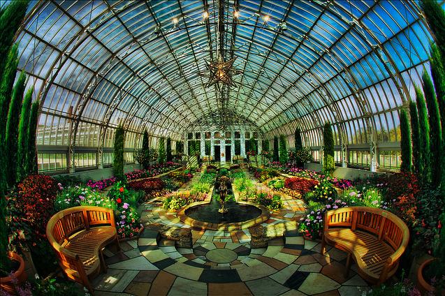 Inside Greenhouses