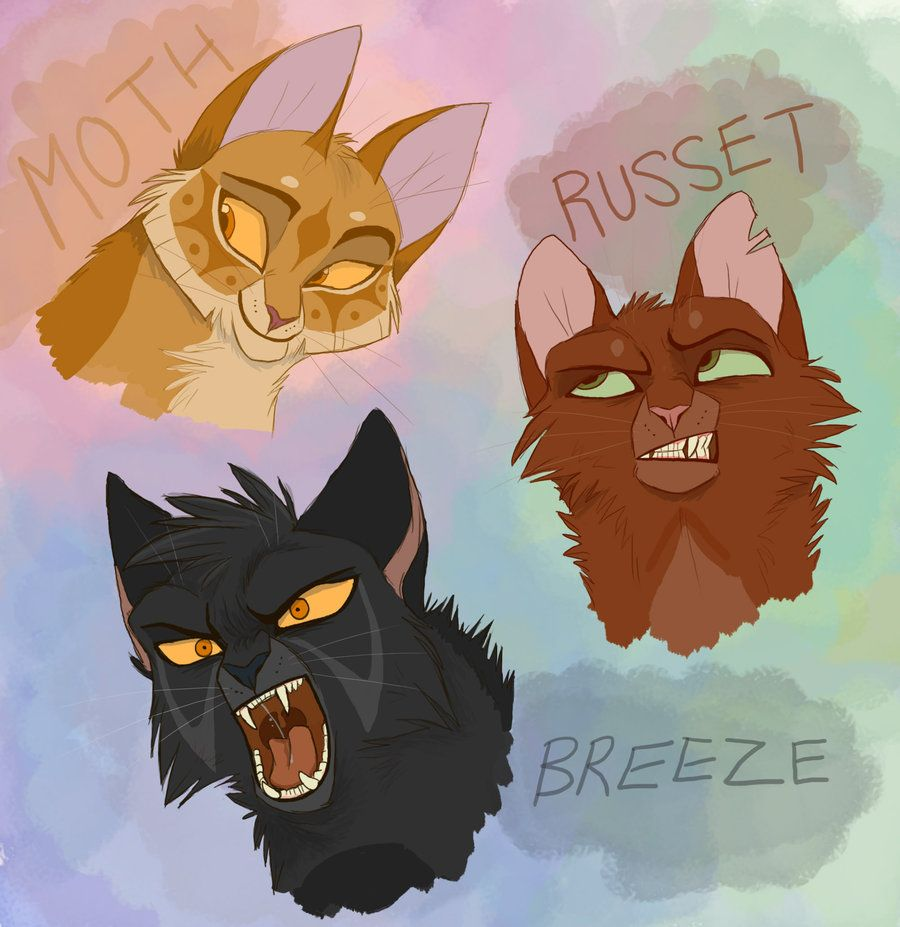 WARRIORS...come Out And Play By Graystripe64.deviantart