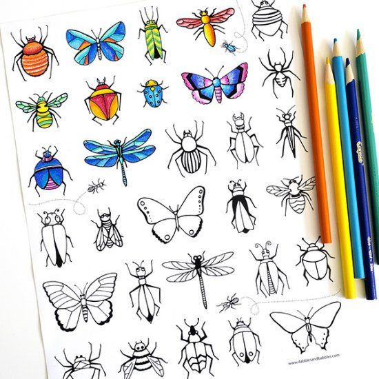 Fun free printable bugs insects  butterflies coloring page that