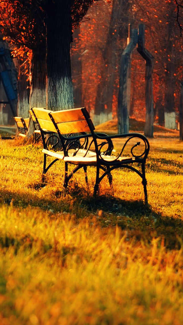 Fall Bench Leaves Autumn Fall Wallpaper Iphone 5s