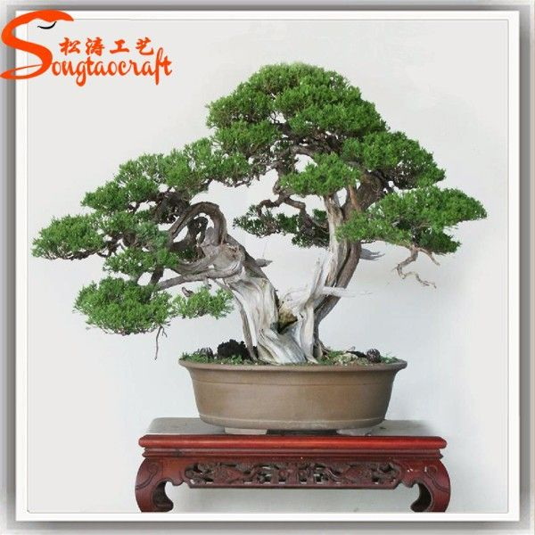 New Products Bonsai Pine Tree Price Artificial Japanese Artificial Bonsai Tree Photo, Detailed about New Products Bonsai Pine Tree Price Artificial Japanese Artificial Bonsai Tree Picture on Alibaba.com.