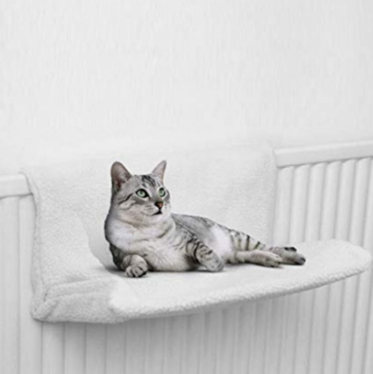 Petlicity Warm And Cosy Pet Cat And Dog Radiator Bed Uk Product England Amazonuk Products Home Pets Cat Cats Petsupplies Cats Pets Cats Cats Cat Bed