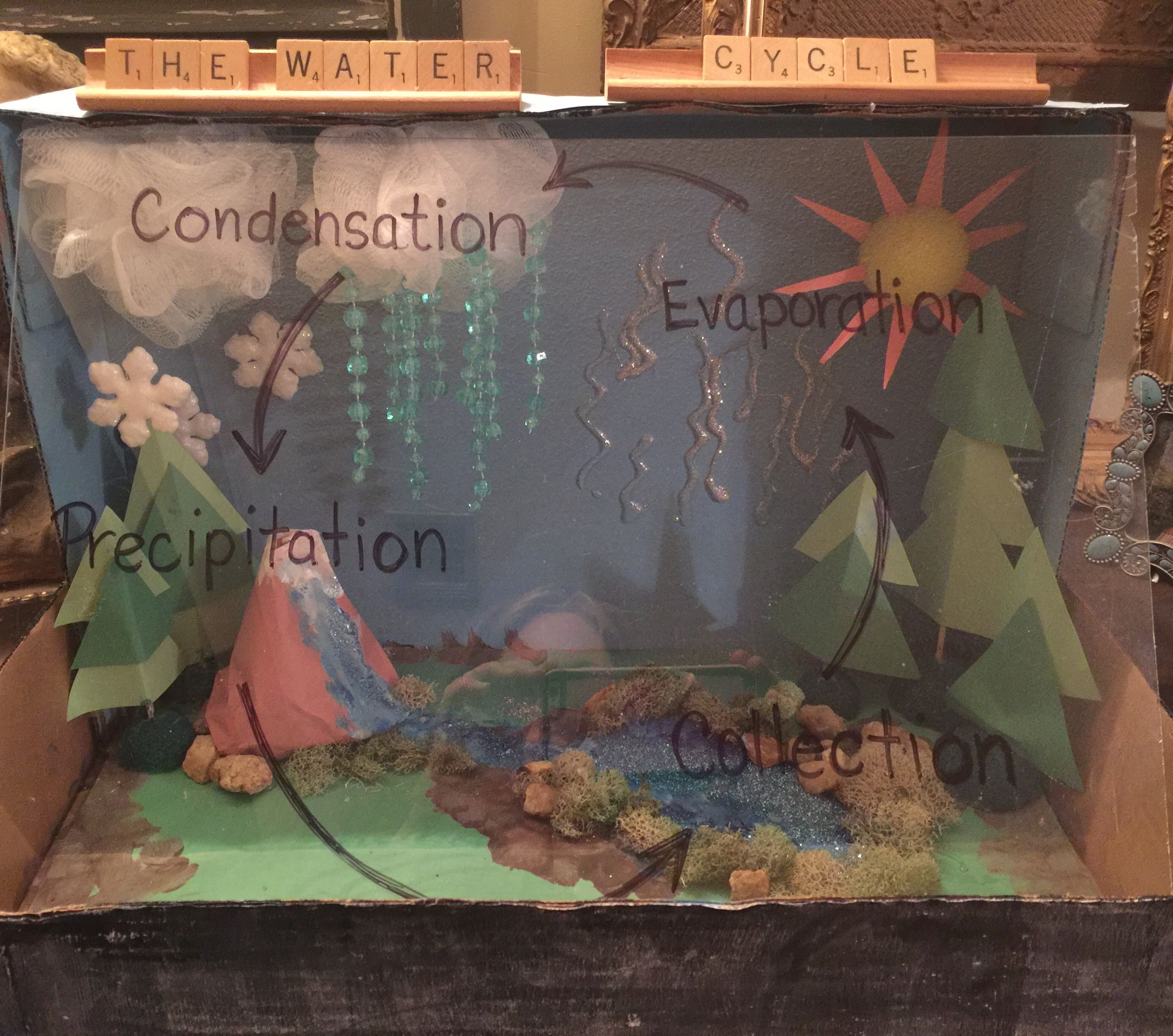 hight resolution of water cycle project 4th grade