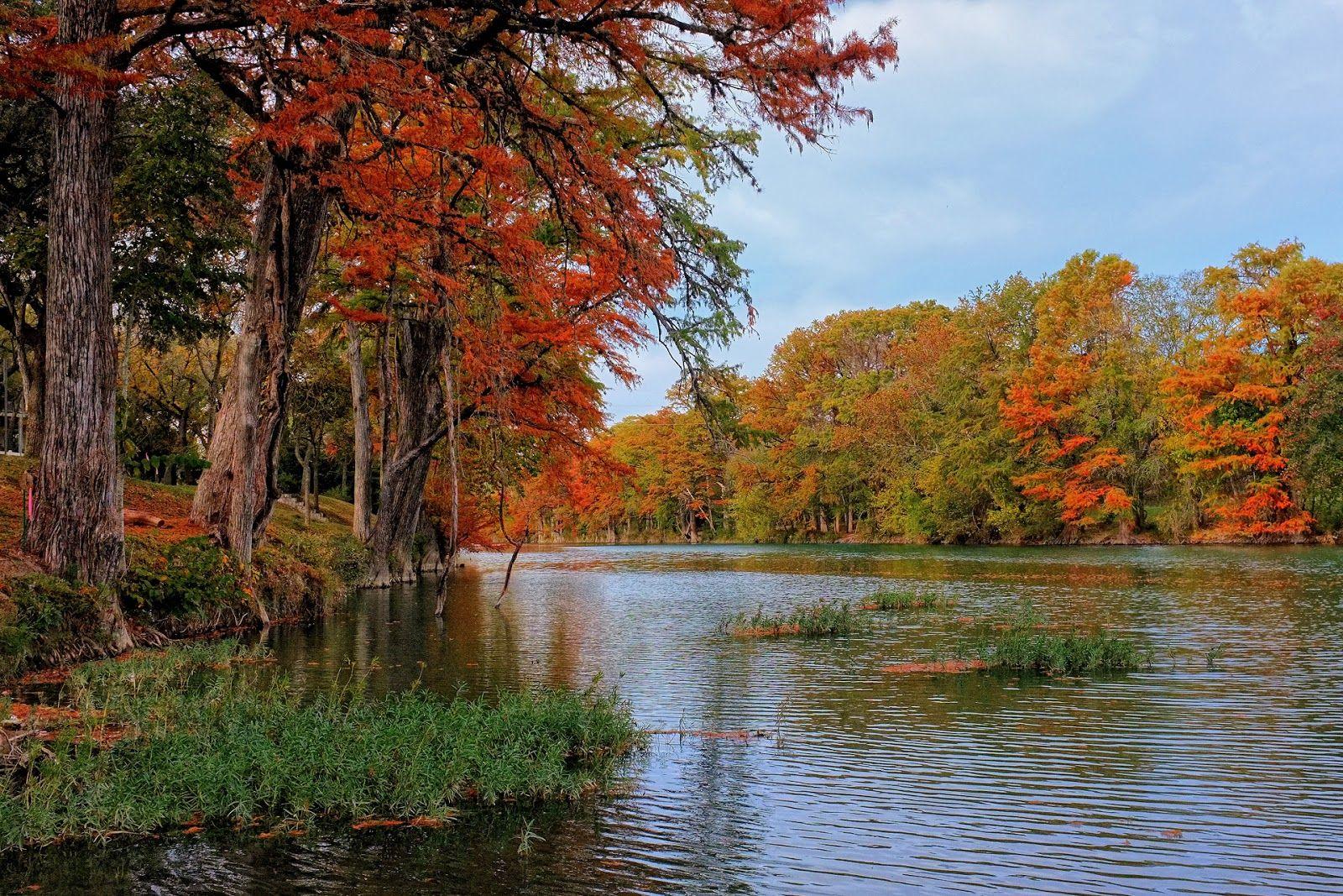 fotografias+de+paisajes,+naturaleza,+animales,+rios,+lagos,+bosques+y+montañas+(12).jpg (1600×1067)
