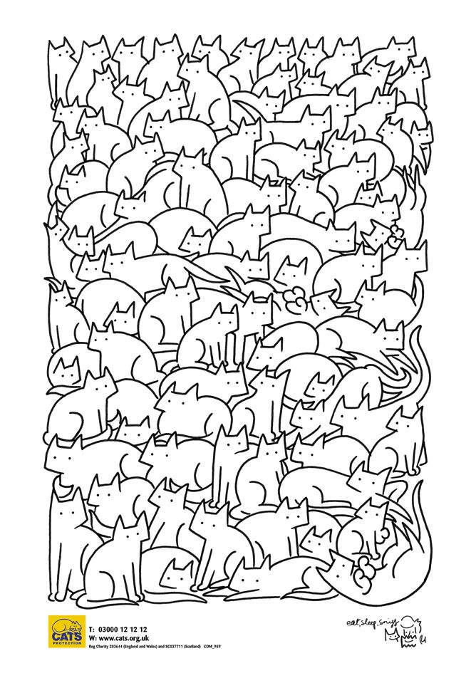 Your Cat Colour Me Kitty Cat Craft Cat Coloring Page Mindfulness Colouring Cat Colors